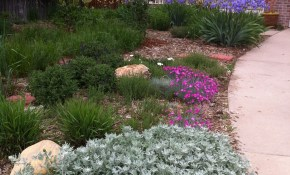 Improve The Exterior Of Your Home With These Handy Landscaping Tips with Backyard Xeriscape Ideas