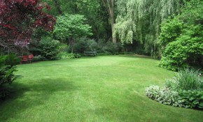 Large Backyard Landscaping Ideas Very Large 10000 Sq Ft Half Acre within 10 Some of the Coolest Designs of How to Craft Landscaping A Large Backyard