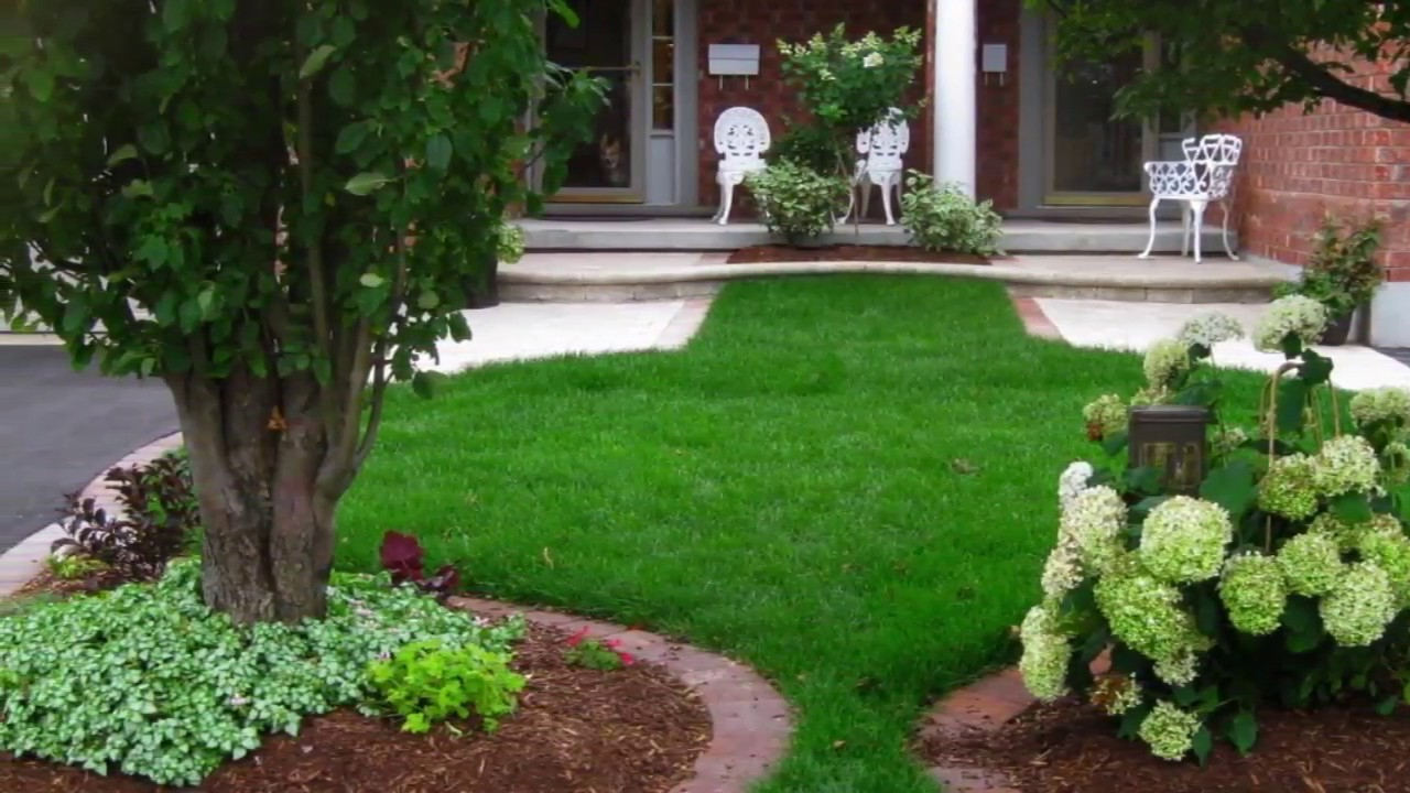 Modern Backyard Best Small Backyard Landscaping Ideas Do Myself within Backyard Pictures Ideas Landscape