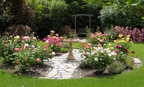 Simple Design Ideas Rose Garden Plans Flowers Rose Garden Design intended for Backyard Gardening Ideas With Pictures