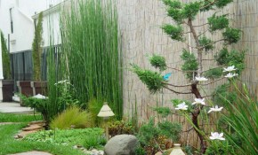 Simple Small Garden Landscaping Ideas Low Maintenance Gardening In A intended for 14 Clever Tricks of How to Make Shady Backyard Landscaping Ideas