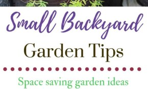 Small Backyard Garden Ideas Tips Family Food Garden pertaining to 10 Clever Concepts of How to Make Garden Ideas For Small Backyards