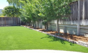 Synthetic Turf Ennis Texas Paver Patio Backyard Landscaping Ideas with Backyard Ideas Texas