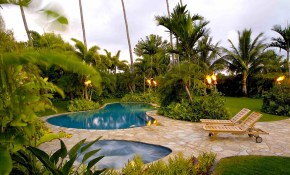 Tropical Backyard Landscape Designs Pool Tropical Landscaping Ideas with Tropical Landscaping Ideas For Backyard