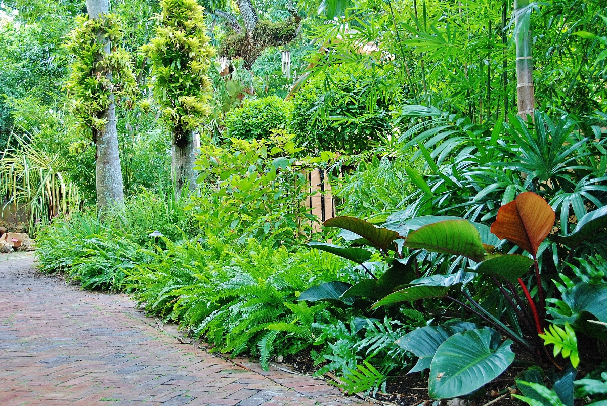 Tropical Landscape Garden Design Miami Knoll Landscape inside 13 Smart Concepts of How to Improve Tropical Landscaping Ideas For Backyard