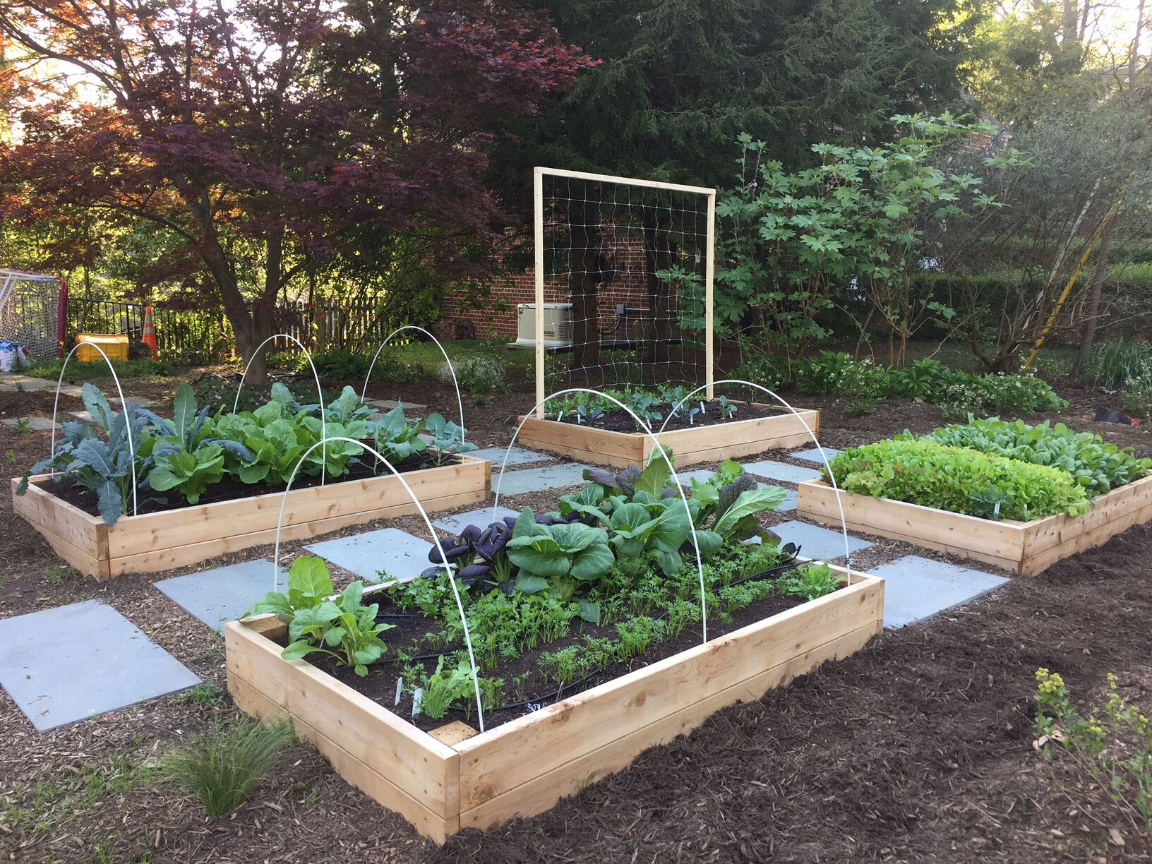 Why You Should Plant A Front Yard Veggie Garden inside 13 Smart Initiatives of How to Craft Backyard Gardening Ideas