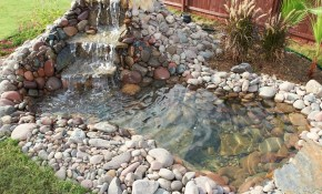 20 Diy Backyard Pond Ideas On A Budget That You Will Love intended for Backyard Ponds Ideas
