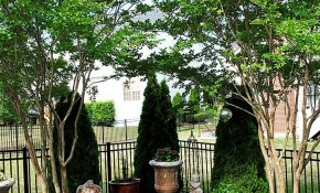 30 Big Tips And Ideas To Create Backyard Privacy Landscaping intended for 10 Smart Ideas How to Improve Backyard Privacy Ideas