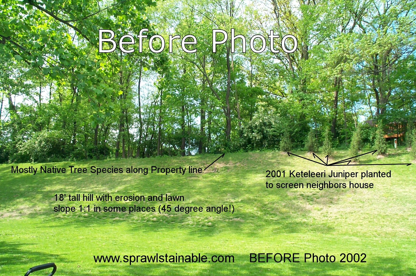 Backyard Hill Landscaping Ideas Sprawlstainable throughout Landscape My Backyard