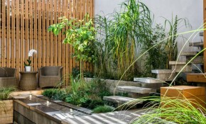 Beautify Your Outdoor Space With Courtyard Landscaping Garden intended for Backyard Courtyard Ideas