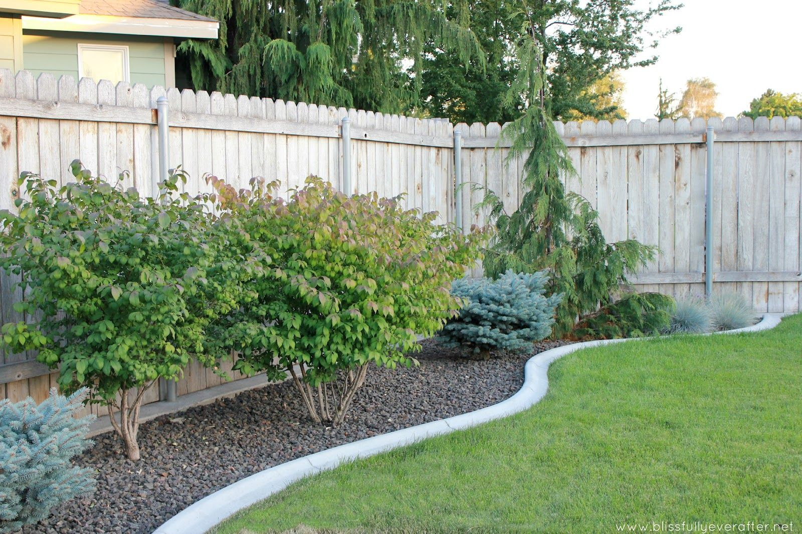 Cheap Landscaping Ideas For Back Yard Blissfully Ever After Patio within 14 Awesome Concepts of How to Build Ideas For Backyard Landscaping On A Budget