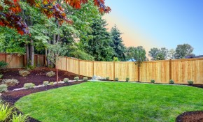 Does A Fence Increase Home Value Heres What The Pros Say within Backyard Privacy Fence