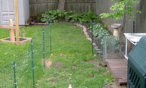 Dog Fence And Deck 8 Steps with Backyard Fencing Ideas For Dogs