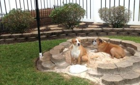 Dog Friendly Backyard Design Fresh Impressive Backyard Ideas For for Dog Friendly Backyard Ideas