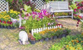 Fabulous And Innovative Ideas For Backyard Landscaping On A Budget intended for 14 Awesome Concepts of How to Build Ideas For Backyard Landscaping On A Budget