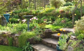 My Garden In April Vashon Ideas Sloped Garden Terraced Backyard intended for 15 Smart Tricks of How to Upgrade Terraced Backyard Landscaping Ideas