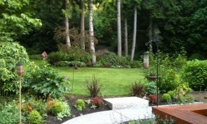 Pacific Northwest Garden Front Yard Birch Landscape Garden in Northwest Backyard Landscaping Ideas
