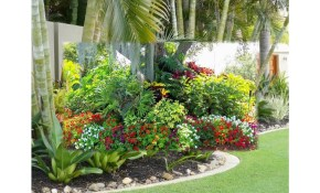 Small Tropical Garden Ideas Youtube regarding 14 Awesome Concepts of How to Build Tropical Backyard Landscaping