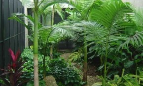 Small Tropical Landscaping Ideas Small House Tropical Backyard inside 14 Awesome Concepts of How to Build Tropical Backyard Landscaping