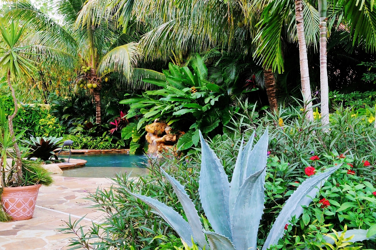 Tropical Landscape For Backyard Design Idea Home Inspirations intended for Tropical Backyard Design Ideas