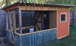 Chicken Coop Diy Chickens Backyard Chicken Coop Plans Chickens intended for 10 Genius Tricks of How to Make Backyard Chicken Coop Ideas