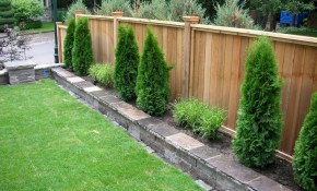 Outdoors Affordable Backyard Fence Ideas For Your Best Outdoor pertaining to Cheap Backyard Fence