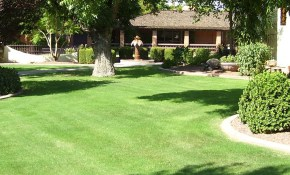 Scottsdale Landscaping Company Lawn And Yard Care Maintenance pertaining to Backyard Landscaping Company