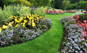 10 Simple Diy Landscaping Ideas For Your Home On The Cheap inside Inexpensive Backyard Landscaping