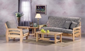 20 Of The Best Ideas For Living Room Futon Decorating Ideas Living for Futon Living Room Set