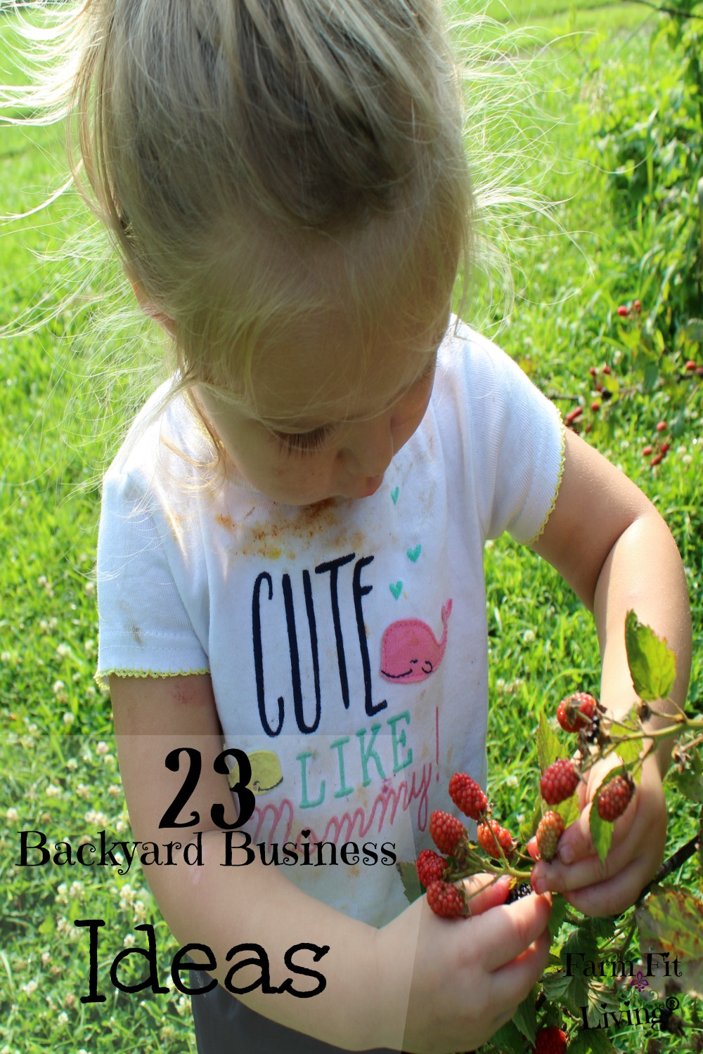 23 Backyard Business Ideas To Create From Your Hobbies Farm Fit Living for Backyard Business Ideas