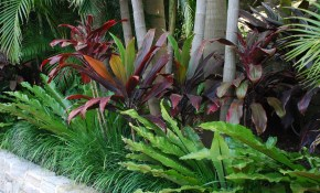 25 Easy And Simple Landscaping Ideas For Beautiful Garden Designs within 14 Smart Designs of How to Upgrade Backyard Tropical Ideas
