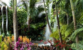 55 Beautiful Tropical Plants For Backyard Landscape Ideas To Make throughout 14 Smart Designs of How to Upgrade Backyard Tropical Ideas