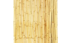 Backyard X Scapes Bamboo Fencing Natural intended for 10 Awesome Initiatives of How to Build Backyard XScapes Reed Fencing