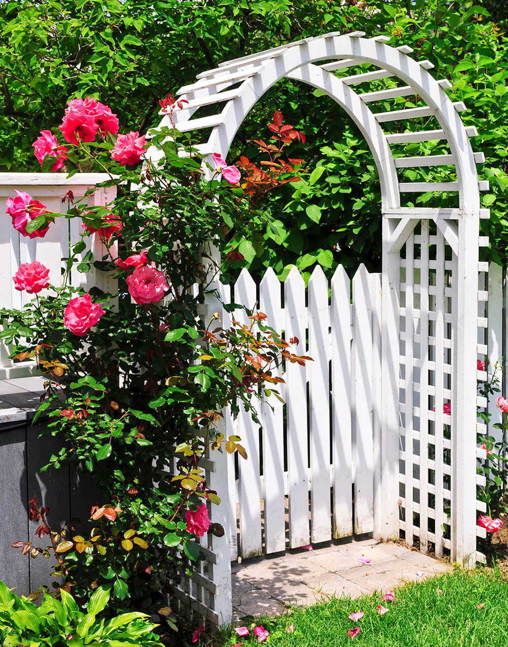 Change The Look Of Your Yard With An Arbor Or Pergola Backyard Ideas within Backyard Arbor Ideas