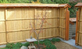 Fence Enhance Your Indoor And Outdoor Decor With Bamboo Fence Home intended for Home Depot Backyard Fence