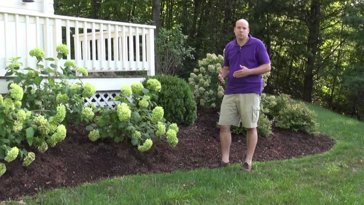 Front Yard Landscape Design Ideas Trumbull Ct Landscape Designer for 14 Some of the Coolest Ways How to Build How To Landscape A Backyard