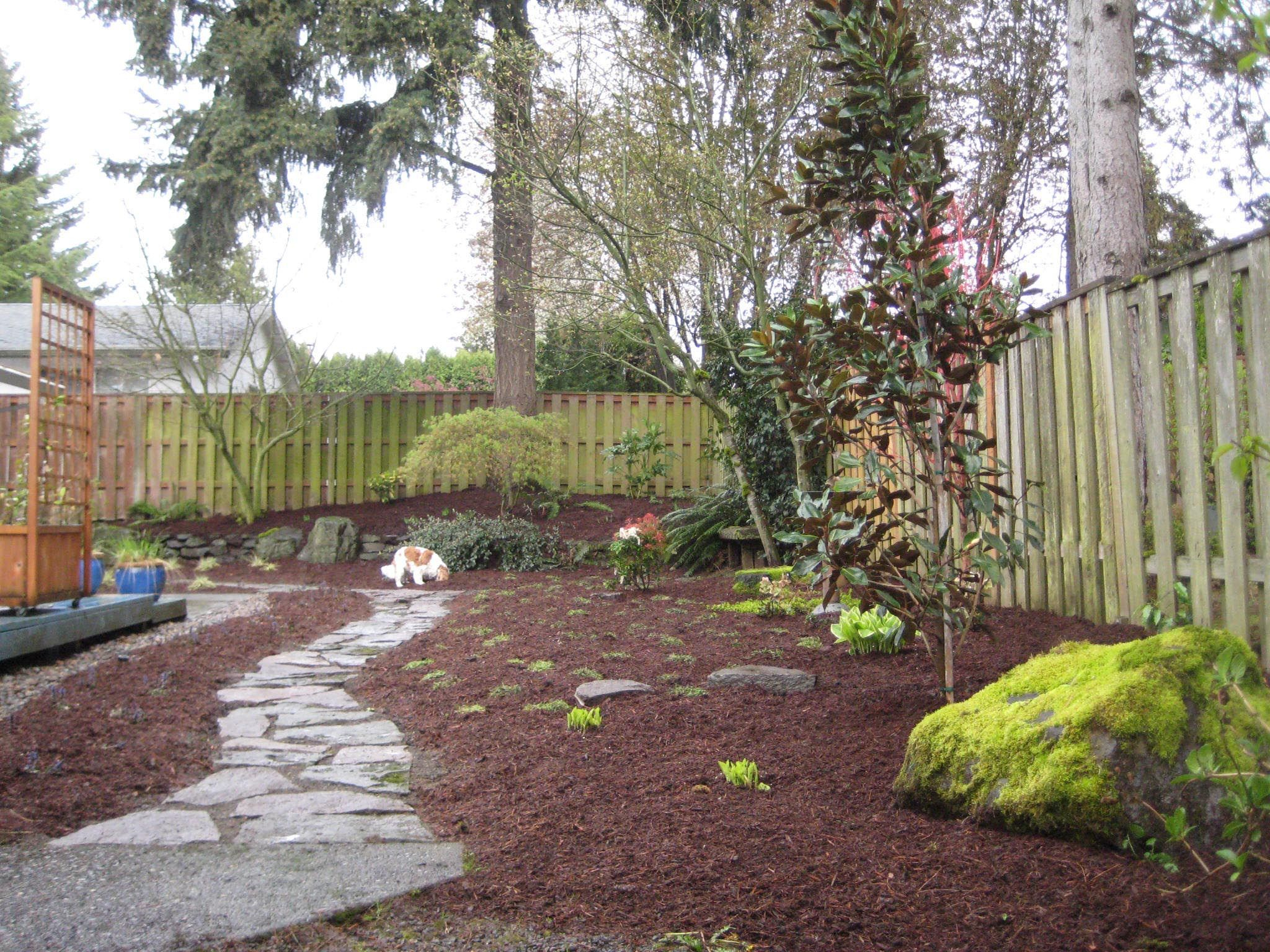 Landscaping Ideas For Small Yards With Dogs Garden Ideas Small inside Backyard Landscaping Ideas For Dogs