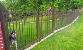 No Dig Dog Fence The Fence For Dogs That Dig Outdoor Living Expert in 11 Awesome Ways How to Build Backyard Fences For Dogs