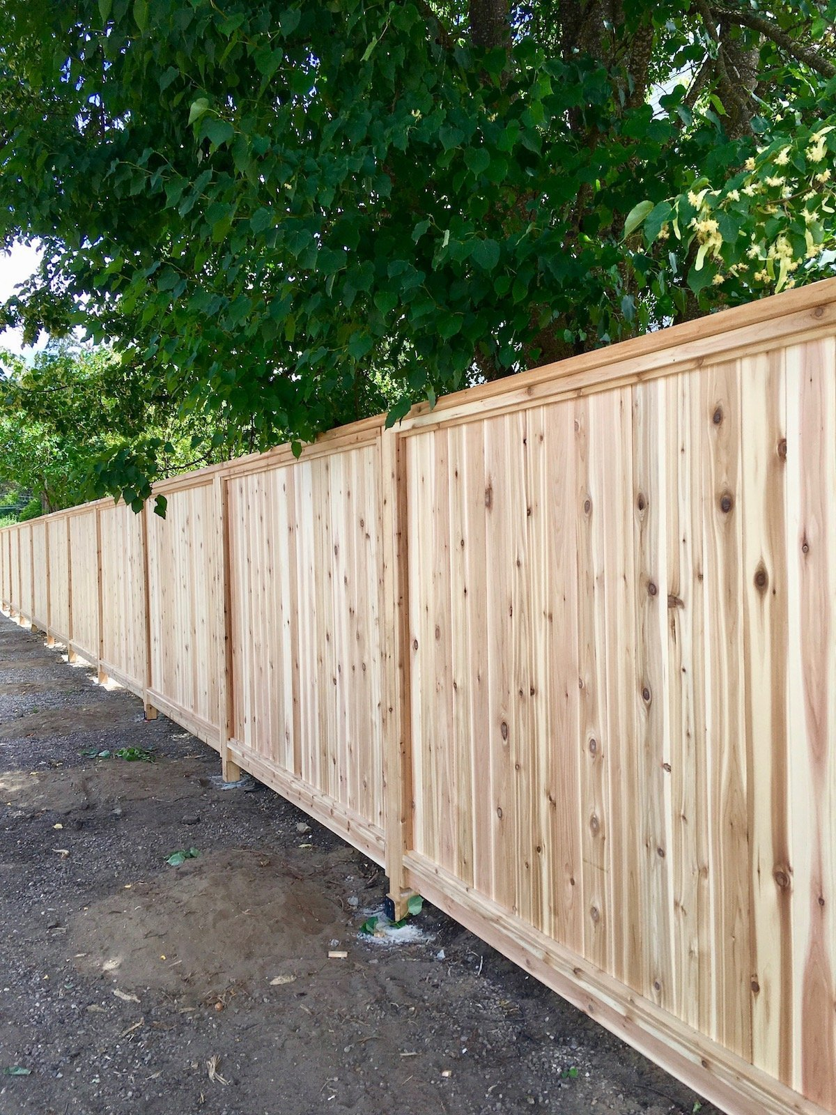 Privacy Fence Ideas Deliredutchatfr within 12 Some of the Coolest Designs of How to Makeover Backyard Privacy Fence Ideas