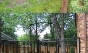 Read About Backyard Fence Options Diy Fence Ideas Glass Fence with Fence Options For Backyard