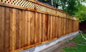 Top 60 Best Dog Fence Ideas Canine Barrier Designs regarding Backyard Fencing For Dogs