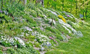 13 Hillside Landscaping Ideas To Maximize Your Yard in Backyard Hillside Landscaping Ideas