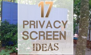 17 Privacy Screen Ideas Thatll Keep Your Neighbors From with Privacy Ideas For Backyard