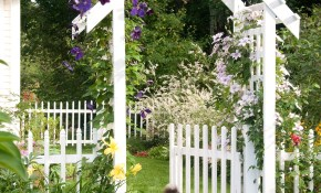 20 Landscaping Ideas To Perk Up Your Backyard regarding Backyard Garden Ideas