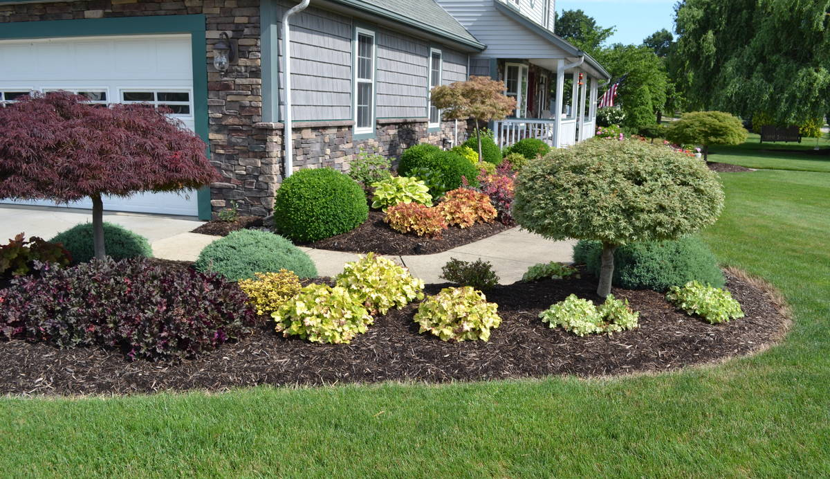 23 Landscaping Ideas With Photos Mikes Backyard Nursery with Plants For Backyard Landscaping