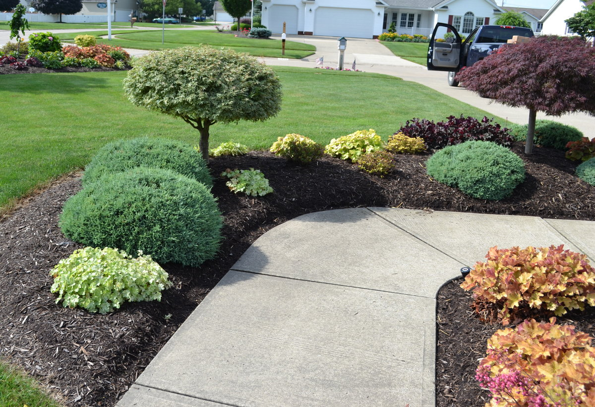 23 Landscaping Ideas With Photos Mikes Backyard Nursery with regard to Plants For Backyard Landscaping