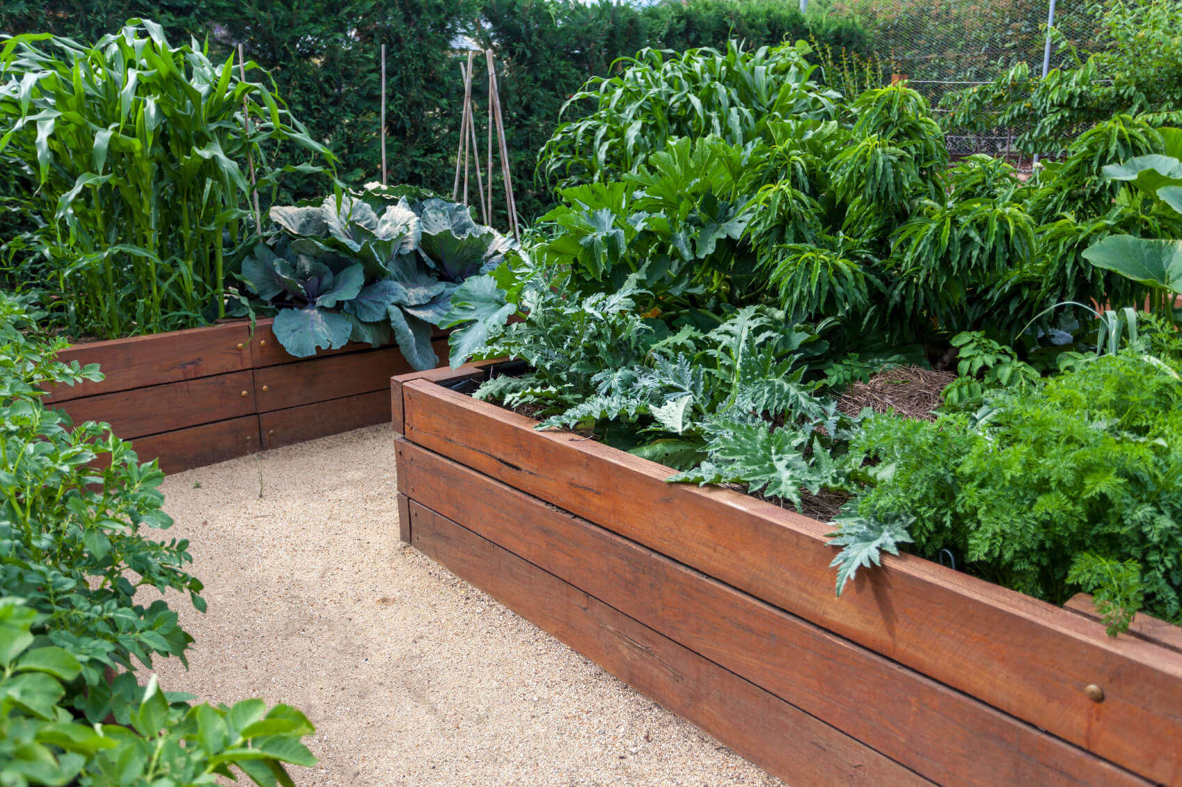 41 Backyard Raised Bed Garden Ideas for 12 Awesome Tricks of How to Craft Backyard Garden Bed Ideas