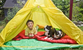 5 Ideas For Camping In The Backyard Howstuffworks within Backyard Camping Ideas