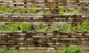 50 Backyard Retaining Wall Ideas And Terraced Gardens Photos in 12 Clever Ideas How to Upgrade Backyard Retaining Wall Ideas