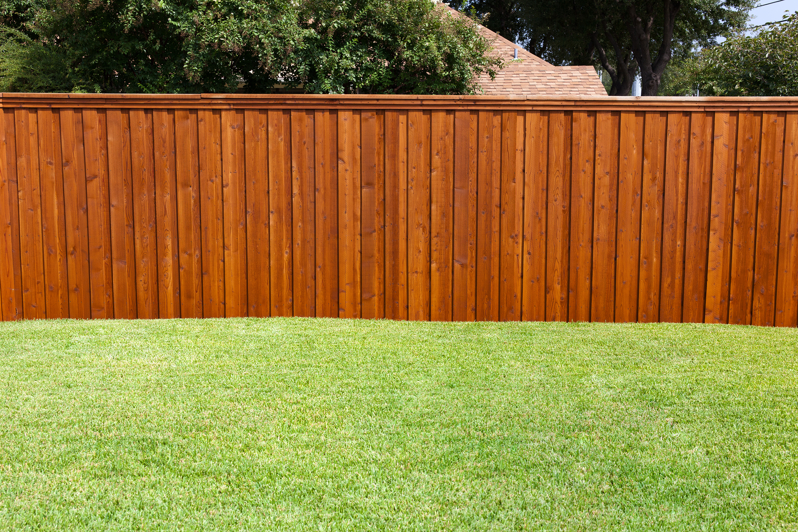 6 Reasons To Install A Fence Around Your Backyard Themocracy throughout Fencing For Backyard